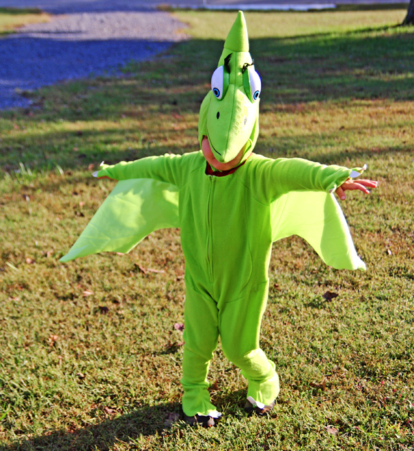 Dinosaur Train Tiny costume
