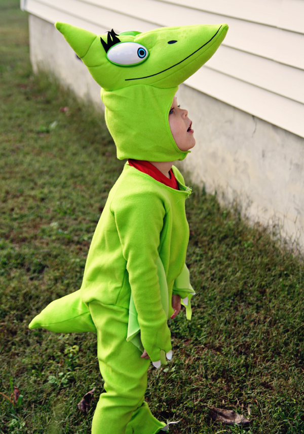 Dinosaur Train Costume