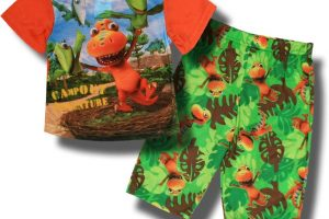 Dinosaur Train 2 Piece Pajama Set Shorts