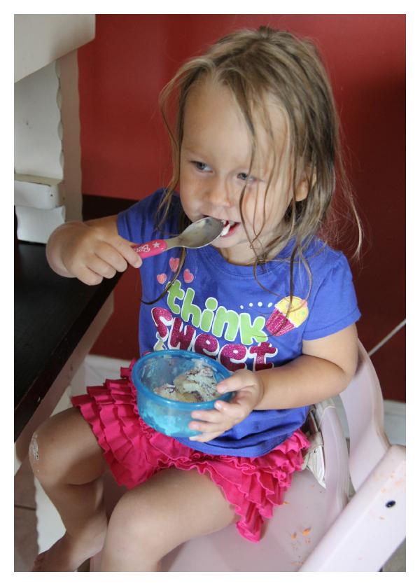 Edy's Ice Cream