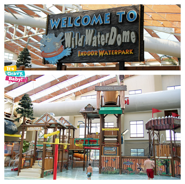 Wilderness at the Smokie Wild Water Dome Indoor Waterpark