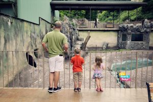 Ober Gatlinburg Wildlife Exhibit