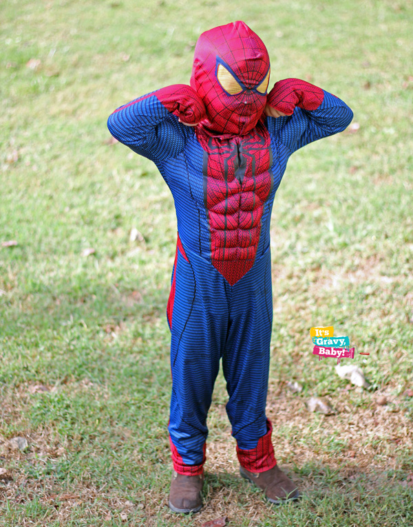 Spiderman Costume Classic