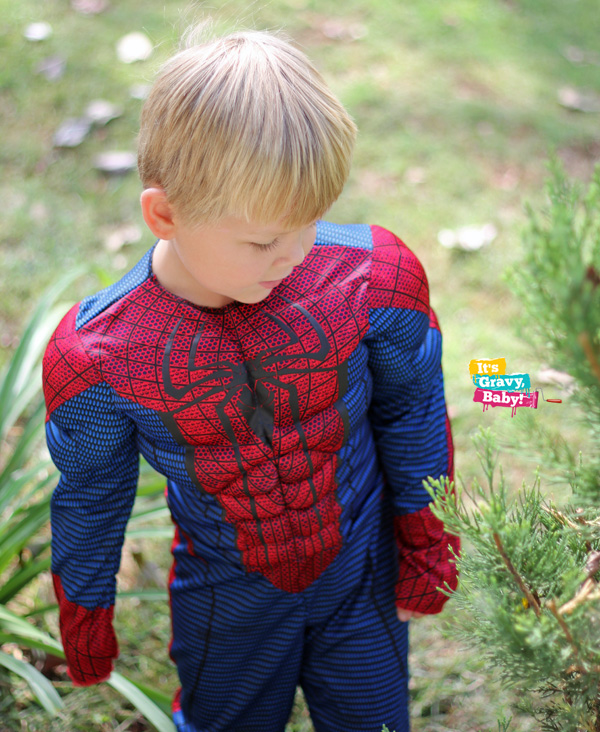Spiderman Costume Halloween