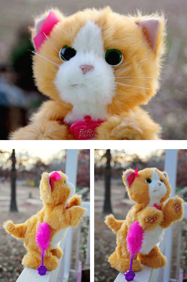 FurReal Daisy Kitty Review