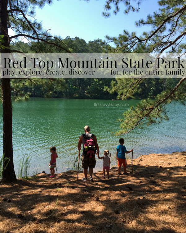 Red Top Mountain Water Family